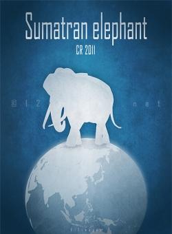 near extinction endangered elephant Asian elephant subspecies poaching tusks