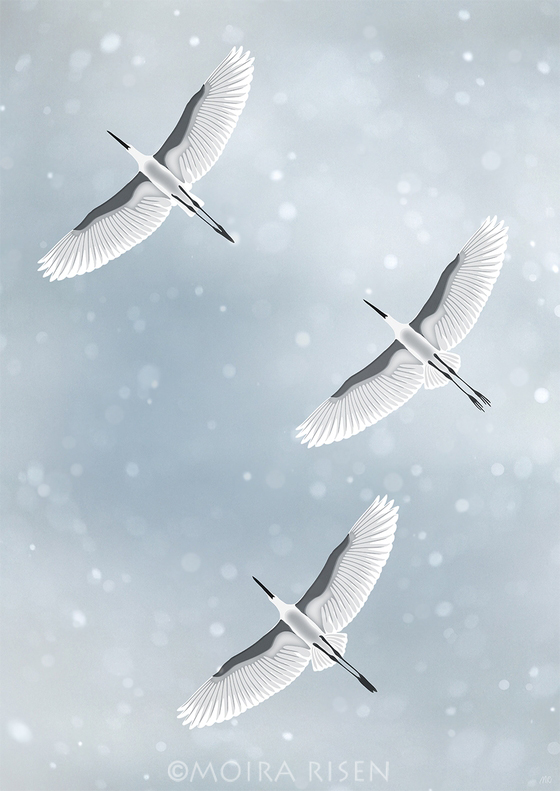 snowfall falling snow winter sky clouds flying birds