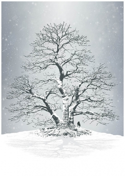 leafless bare winter tree snowy branches twigs sky contrast silhouette lonely lonesome wolf standing on a hill in snowfall