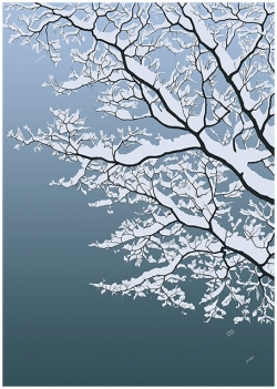 snowy tree branches twigs winter tree leafless bare silhouette against blue sky