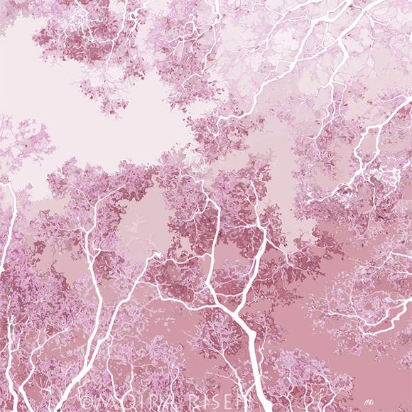 abstract tree branches canopy trunk sky peach rose