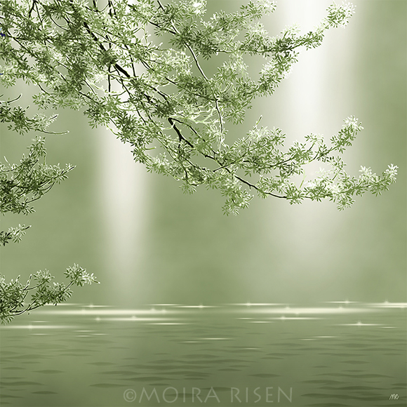 tree branch above lake river bank water weeping hanging reaching summer green leaves reflection soft yellow light sunbeams fog mist