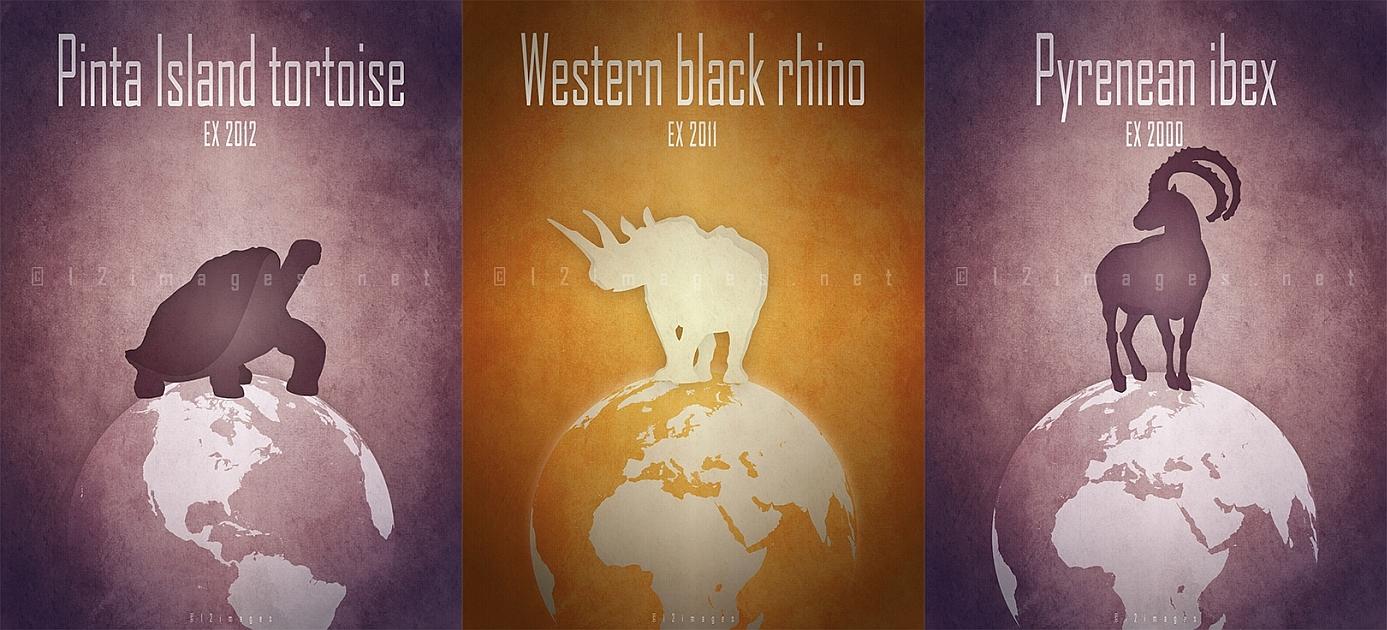 recently extinct animals 21st century