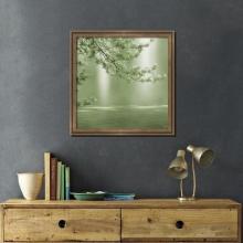 landscape-nature-wildlife-paintings-illustrations-prints