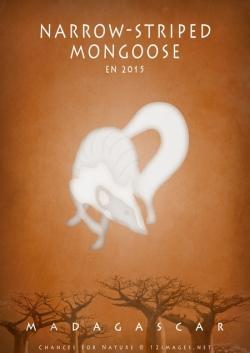 endangered-mongoose-Madagascar