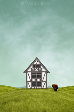 Small-half-timbered-house-on-a-green-hill