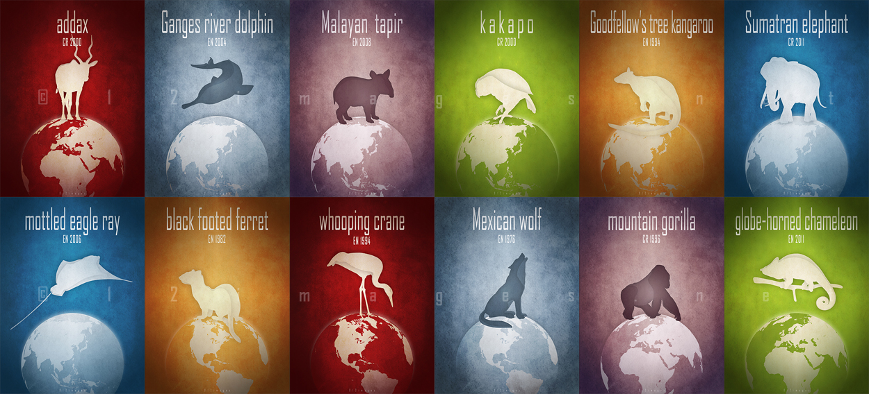 12 endangered animals names list poster picture near extinction critically endangered wildlife conservation foundation wildcare IUCN red list logo endangered species act endemic species