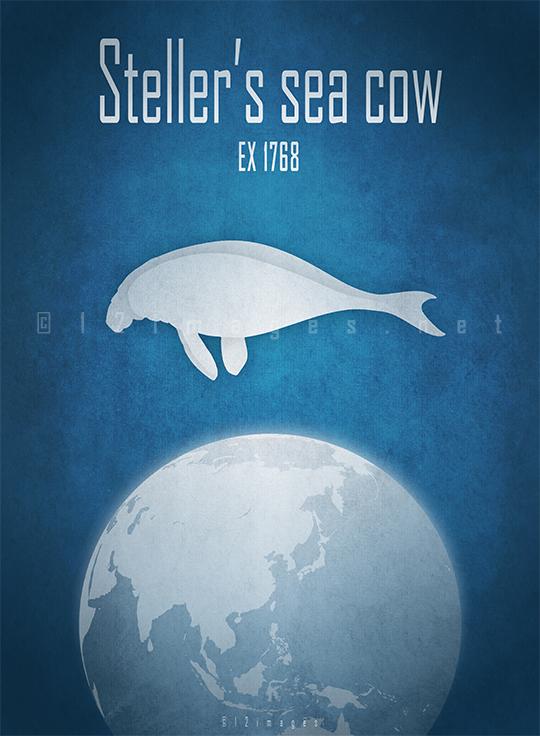 stellers sea cow Hydrodamalis gigas marine mammal dugong manatees North Pacific Commander Islands hunting meat skin fat fur trade extinct 18th century