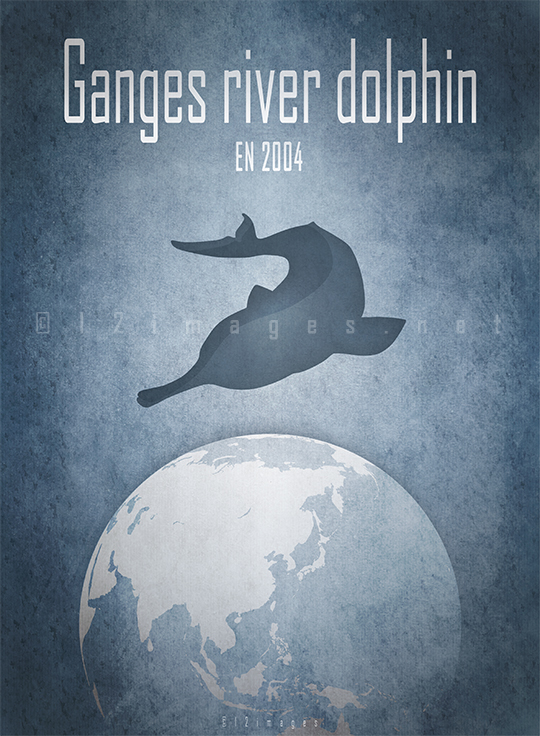 ganges river dolphin Platanista gangetica freshwater dolphin Ganges Brahmaputra India national aquatic animal IUCN endangered species Indian Wildlife Act conservation CITES dolphin sanctuary baiji
