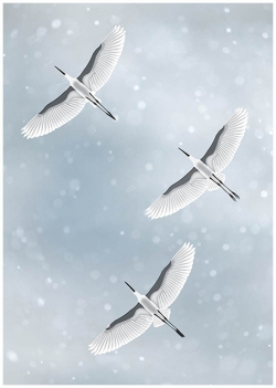 flying birds migration heron egret crane sky silhouette clouds close-up black and white