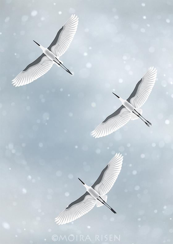 snowfall falling snow winter sky clouds flying birds