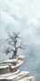 winter landscape skyscape snowfall clouds blizzard snowflakes trees mountain