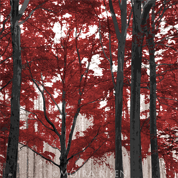 autumn forest trees trunks branches crimson red purple leaves maple japanese mist fog