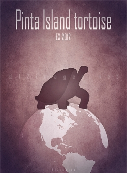 recently extinct animals endemic species endangered turtles Pacific ocean 21st 20th century