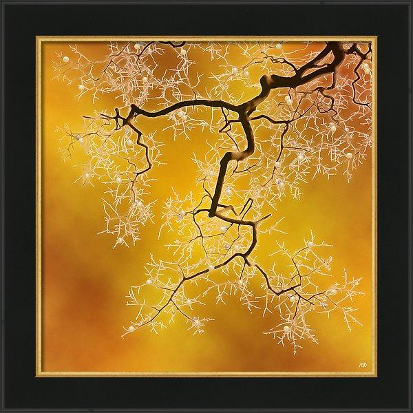 amber-moira-risen