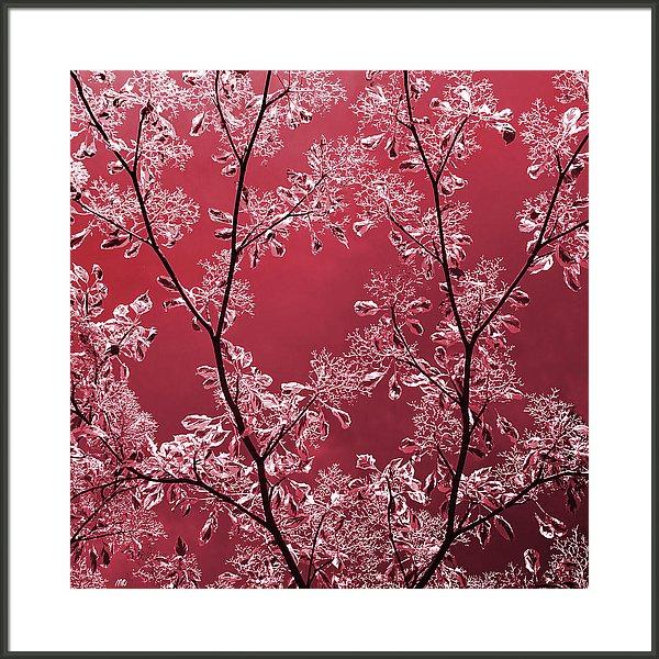 ruby-moira-risen