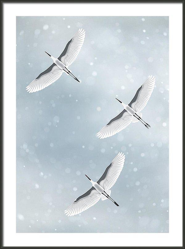 snowfall-moira-risen