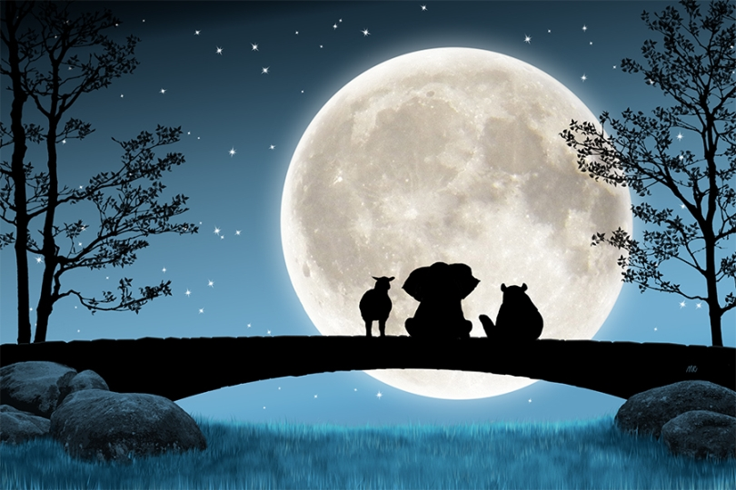 night-sky-full-moon-stars-forest-animals-silhouette-shadow-against-contrast-