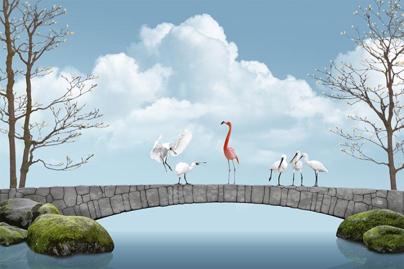 spoonbills-flamingo-standing-pink-white-lake-river-water-swamp