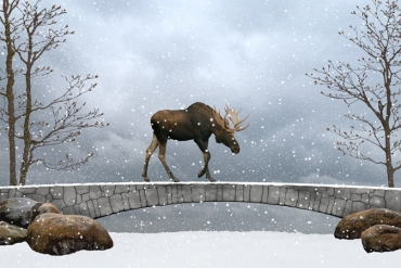 winter-moose-tale-story-enchanted-forest-snowfall