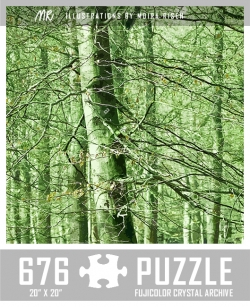 challenging-jigsaw-puzzles-beech-tree-forest-woods