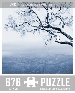 challenging-jigsaw-puzzles-hoarfrost-winter-tree-branch-frozen-lake