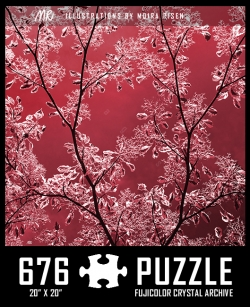 challenging-jigsaw-puzzles-ruby-red-nature-twig-leaves-buds