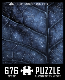challenging-jigsaw-puzzles-starry-night-sky-veins-of-a-leaf