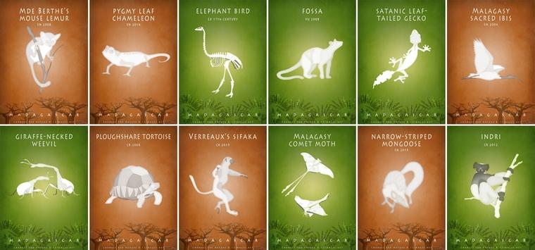 Madagascar-wildlife-endangered-forest-animals-environmental-awareness