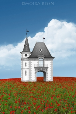 Lonely-house-in-the-middle-of-a-poppy-field